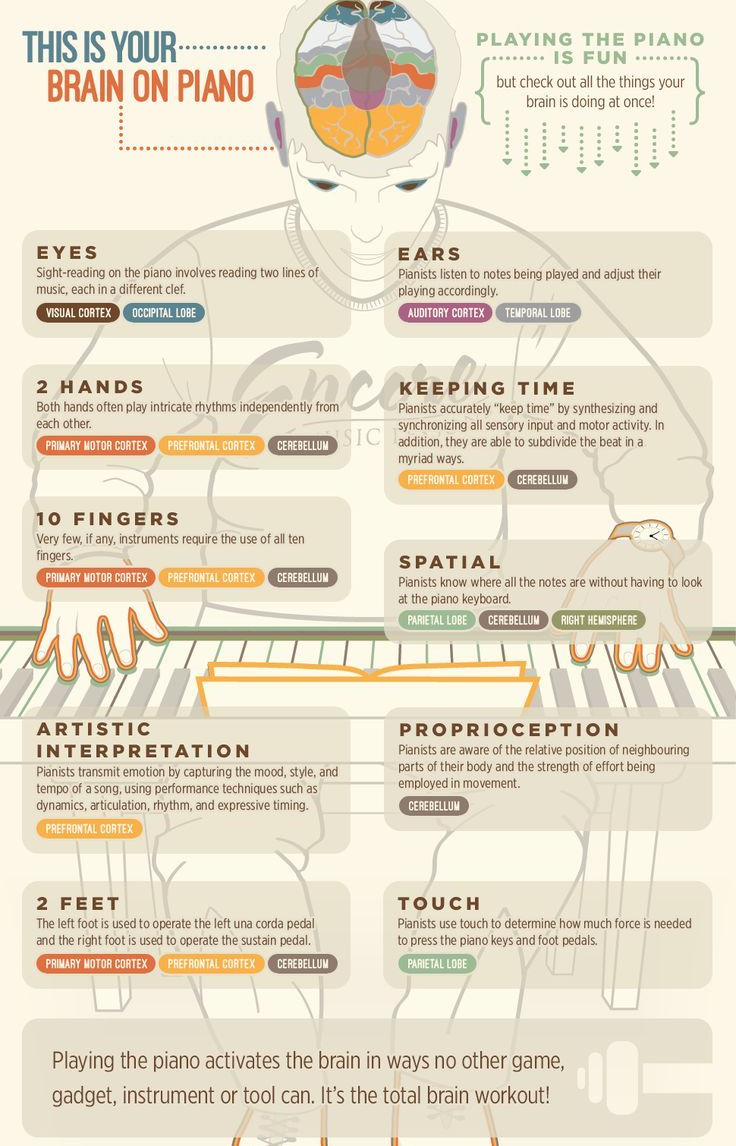 Music Infographic Each Part